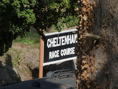 Cheltenham Race Course Station on the GWSR - sign (ell brown) Tags: cheltenham cheltenhamspa gloucestershire england unitedkingdom greatbritain spatown tree trees cotswolds gloucestershirewarwickshiresteamrailway gwsr gloucswarkssteamrailway gwr cheltenhamracecoursetobroadway cheltenhamracecoursestation cheltenhamracecourse prestbury sign ramp
