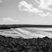 Coastal Path to Broad Haven