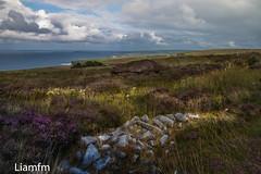 Céidí  Fields 2 (Liamfm .) Tags: neolithicfields comayo ireland céidífields