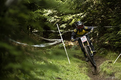 _E3I9217b (garyreevesphoto) Tags: hopton woods bds british cycling dh down hill downhill race 2019 hsbc uk national series 4 four gary reeves photos photography garyreevesphoto