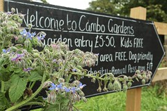 Welcome to Cambo (Cambo_Gardens) Tags: borage cambogardens welcome