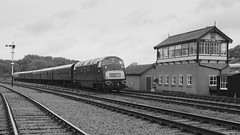 Passing the box (Duck 1966) Tags: d821 greyhound diesel hydraulic warship locomotive gcr timelineevents train emrps
