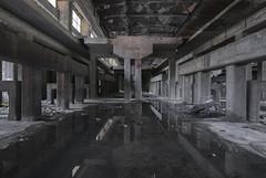 Riflessioni Industriali