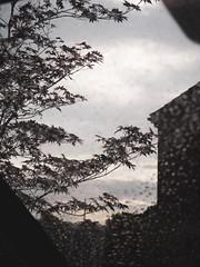 through a rainy windscreen