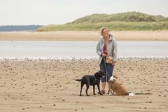On the beach (alasdair massie) Tags: labrador dog black vizsla sea norfolk seaside pasha sarah scarpa kingslynn england unitedkingdom