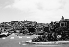 College Avenue, San Francisco (Postcards from San Francisco) Tags: m2 jchstreetpan400 rodinal film analog sanfrancisco california konicauchexanon35mmf2
