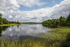 Kawishiwi River (nebulous 1) Tags: glene mn minnesota clouds kawishiwiriver nebulous1 nikon refleciton river trees