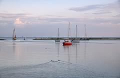 Evening (Julysha) Tags: lake ijsselmeer hoorn thenetherlands noordholland boats ducks evening sunset 2019 autumn september acr d850 sigma241054art sky