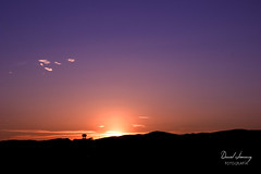 _MG_1830 - e t (Daniel Jiménez Fotógrafo) Tags: landscape paisaje atardecer getdark sun sunset lateafternoon building edificio cloud nube sky cielo colors purple yellow red pink dark darkness madrid spain españa danifotografia danieljimenezfotowixcomportfolio danieljg