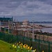 SEAPOINT AND THE MARTELLO TOWER [OLD PHOTOGRAPH - 16 MARCH 2008]-155648