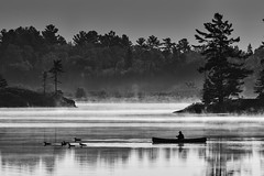 Morning Congestion - 3905 (RG Rutkay) Tags: bw commonloon grundytrip canoe fog landscape mist monchromatic nature nearnorth outdoors treeforest wilderness