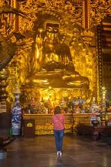 Adorando el buda (rraass70) Tags: canon d700 monumentos estatuas ninbinh deltadelriorojo vietnam