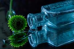 oh damn (hey ~ it's me lea) Tags: ohdamn spill bottle pharmacybottle glass aquaglass flower stilllife reflection