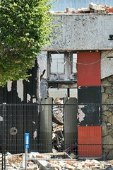 Open House (WalrusTexas) Tags: anthropocene urban tree