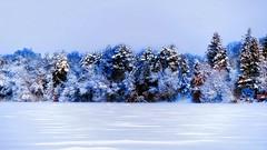 It won't be long now !! (Bob's Digital Eye 2) Tags: bobsdigitaleye2 canon canonefs55250mmf456isstm flicker flickr frozenlake ice march2019 shoreline snow snowscene snowscape trees windowview winter frost