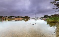 Quay Ducks (nicklucas2) Tags: seascape christchurch quay priory dorset cloud reflection river stour boat bird duck