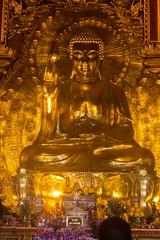 El buda dorado (rraass70) Tags: canon d700 monumentos estatuas ninbinh deltadelriorojo vietnam