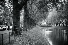 early autumn@Kö, Düsseldorf (Amselchen) Tags: season bokeh blur dof depthoffield canon l39 sony mono monochrome blackandwhite bnw sonyilce7rm2 canon50mmf12ltml39 germany streettree street water city cityscope people