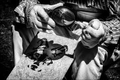 Dessiner avec un crayon de soleil /  Draw with a sun pencil (vedebe) Tags: soleil mains hands homme humain people artiste art dessin ville city rue street urbain urban noiretblanc netb nb bw monochrome
