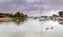 Observing Ducks (nicklucas2) Tags: seascape christchurch quay priory dorset cloud reflection river stour boat bird duck