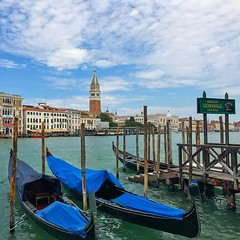 Campanile di San Marco, Palazzo Ducale, gondolas and the Canal Grande - Venice in one picture! Would you like to go around Venice in a gondola?  #europe #italy #italia #venice #venezia #veneto #venise (pinus.acer) Tags: campanile di san marco palazzo ducale gondolas canal grande venice one picture would you like go around gondola europe italy italia venezia veneto venise