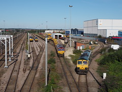 56049 66779 66039 66618 doncaster 05/09/2019 (Offroadanonymous) Tags: 56049 66779 66039 66618 doncaster