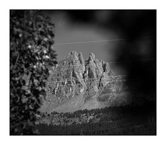 Montagne (No-Man's-Land) (Armin Fuchs) Tags: arminfuchs nomansland mountains trees naturalframe cables 6x7 anonymousvisitor thomaslistl wolfiwolf jazzinbaggies