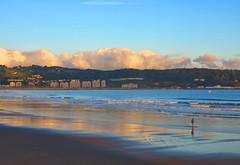 Paseando por la playa (eitb.eus) Tags: eitbcom 16599 g1 tiemponaturaleza tiempon2019 playa gipuzkoa hondarribia josemariavega