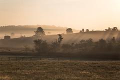 Sonnenaufgang (Gret B.) Tags: nebel sonne sonnenaufgang morgen morgens morning morgensonne morgennebel morgenlicht morgendämmerung morninglight nebelmorgen fog licht light lüneburgerheide