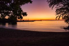 Dawn (KWPashuk (Thanks for >3M views)) Tags: nikon d7200 tamron tamron18400mm lightroom luminar luminar2018 luminar3 luminar31 kwpashuk kevinpashuk morning sunrise silhouette trees water dawn bronte beach harbour oakville ontario canada