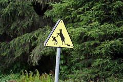 Watch out for wapitis! (SomePhotosTakenByMe) Tags: sign schild wapiti hirsch prairiecreekredwoodstatepark prairiecreek statepark usa america amerika unitedstates california kalifornien outdoor redwoodnationalpark nationalpark redwood