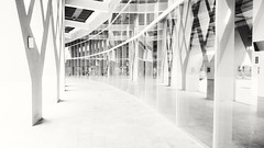 921 Earthquake Memorial Park and Nantou County Convention Exhibition Center (葉 正道 Ben(busy)) Tags: 南投縣 台灣 建築 黑白 鏡射 nantoucounty taiwan building mirror bw monochrome 單色 architecture