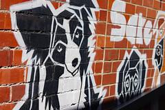 Doggo (ewgqlbhd11) Tags: bordercollie dog black white northperth westernaustralia art street streetart spring wall mansbestfriend