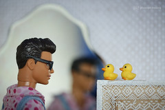 """""""we need to talk about the ducks"""", James Veitch ! (photos4dreams) Tags: dress barbie mattel doll toy photos4dreams p4d photos4dreamz barbies girl play fashion fashionistas outfit kleider mode puppenstube tabletopphotography diorama scenes 16 canoneos5dmark3 comedian jamesveitch"""