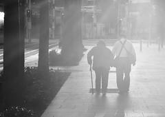 old love is best love (gro57074@bigpond.net.au) Tags: clickx oldloveisbestlove oldage couple monochromatic monotone monochrome mono bw blackwhite f80 2470mmf28 tamron sydney haymarket september2019 candidstreet candid streetphotography guyclift
