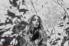 ROBADO PARQUE DEL BUÉN RETIRO-Madrid (FRANCISCO DE BORJA SÁNCHEZ OSSORIO) Tags: robado passion photo pasión primavera photostreet park parquedelretiro parquedelbuenretiro españa exposure enfoque encuadre exposicion madrid love light luz life lovely shot spring summer streetphoto street verano vida instant instante invierno winter amor arrow autumn otoño detalle detalles detail details desenfoque disparo divertido delicado delicate dof depthoffield nature naturaleza nice color colour composition composición colourtemperature bokeh beauty belleza blackandwhite blancoynegro bw timeexposure tiempodeexposición temperaturadecolor