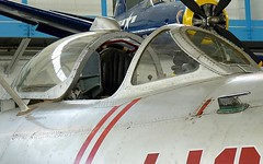 "MiG-17 Fresco 3 • <a style=""font-size:0.8em;"" href=""http://www.flickr.com/photos/81723459@N04/48721614767/"" target=""_blank"">View on Flickr</a>"