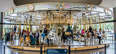 2019 - Road Trip - 16 - Spokane Riverfront Park - Looff Carousel (Ted's photos - Returns 23 Sept) Tags: 2019 cropped nikon nikond750 nikonfx tedmcgrath tedsphotos usa vignetting looffcarousel spokanewa spokane looffcarouselspokane spokanelooffcarousel looffcarouselriverfrontpark riverfrontparklooffcarousel spokaneriverfrontpark riverfrontparkspokane carrousel carousel ride ridepeoplewide anglewide screen tiger horse bab