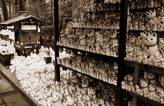 Cats-cats-cats-cats-cats-cats (DameBoudicca) Tags: tokyo japan temple buddhism 日本 nippon 東京 manekineko 寺 beckoningcat japon buddhisttemple giappone templo nihon setagaya tempel tokio bouddhisme 世田谷 tempio budismo japón buddhismus 仏教 buddhismo 豪徳寺 gotokuji buddhisttempel templosbudistas templesbouddhistes gōtokuji cat chat gato katze 猫 gatto katt 招き猫 gatodelasuerte gatodelafortuna chatportebonheur lyckokatt