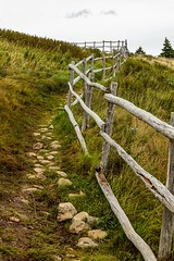 Fenced Path (Karen_Chappell) Tags: trail path fence green field grass nfld torbay eastcoast avalonpeninsula atlanticcanada canada canonef24105mmf4lisusm newfoundland rocks nature outdoors landscape scenery scenic wooden rustic weathered old fathertroytrail wood railing