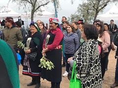 dia-mujer-indigena---16
