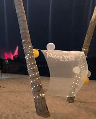 Sentosa, Singapore (Sharon Hahn Darlin) Tags: balloons treetrunks lightdecoration
