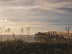Myrtle Beach State Park Pier (Benjamin Coy) Tags: iphone 7 plus atlantic ocean sunrise morning state park south carolina beach