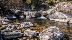 River8 (Est3ban.T) Tags: river water nature stone rocks pretty holidays sun sunshine catamarca landscape chill day stream tree nikon d3300 nikond3300 reflex dslr lightroom
