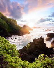 Sunrise, Eastern Maui (Brady Baker) Tags: hawaii maui hana usa travel landscape nature outdoor sunrise ocean geology volcanic rock black fauna plant dawn golden hour color clouds sky dramatic pacific island venus pools peninsula point sea