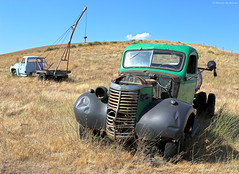 Wheat Trucks - Adams County - Washington State (Electric Crayon) Tags: abandoned trucks truck rust rusty old decay chevrolet chevy ford towtruck pacificnorthwest washingtonstate easternwashington adamscounty usa unitedstates america rural wheat outdoors summer roadtrip electriccrayon patrickmcmanus