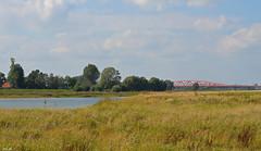 DUTCH LANDSCAPE (JaapCom) Tags: jaapcom landscape water clouds dutchnetherlands bridge natuurfotografie natuur
