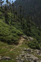 (ashrika.) Tags: kareri himachalpradesh himalayas india