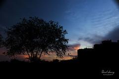 _MG_3148 - e texto (Daniel Jiménez Fotógrafo) Tags: landscape paisaje atardecer getdark sun sunset lateafternoon building edificio cloud nube sky cielo colors purple yellow red pink dark darkness madrid spain españa danifotografia danieljimenezfotowixcomportfolio danieljg
