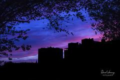 _MG_3044 - e t (Daniel Jiménez Fotógrafo) Tags: landscape paisaje atardecer getdark sun sunset lateafternoon building edificio cloud nube sky cielo colors purple yellow red pink dark darkness madrid spain españa danifotografia danieljimenezfotowixcomportfolio danieljg